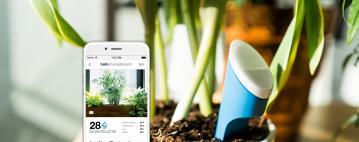 Hello Plant: تحدث مع نباتاتك