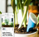 Hello Plant: Connect with Your Plants