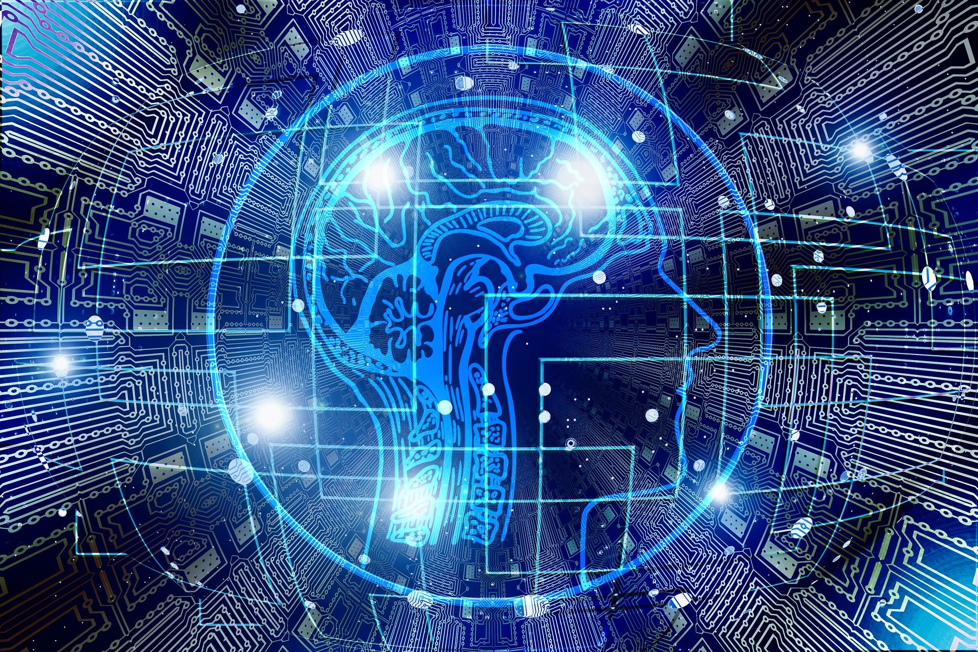 Neuroeconomics: The Next Frontiers for Economic Decision Making