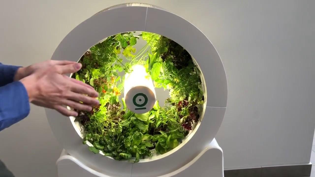 OGarden Smart: Indoor Gardening