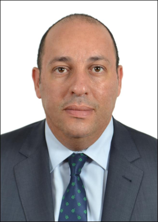 Loay Y. El-Shawarby