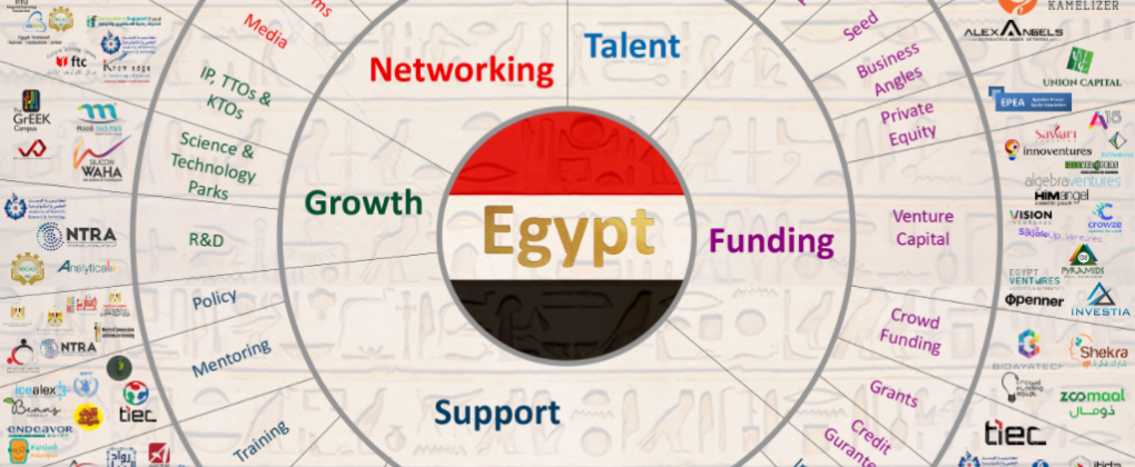 351 Entities in The Seventh Edition Of The Entrepreneurship Ecosystem Map In Egypt