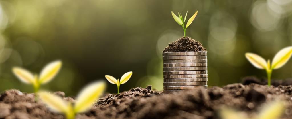 لماذا لا يرغب المستثمرون والصناديق في المغامرة بالاستثمار في الشركات الخضراء؟