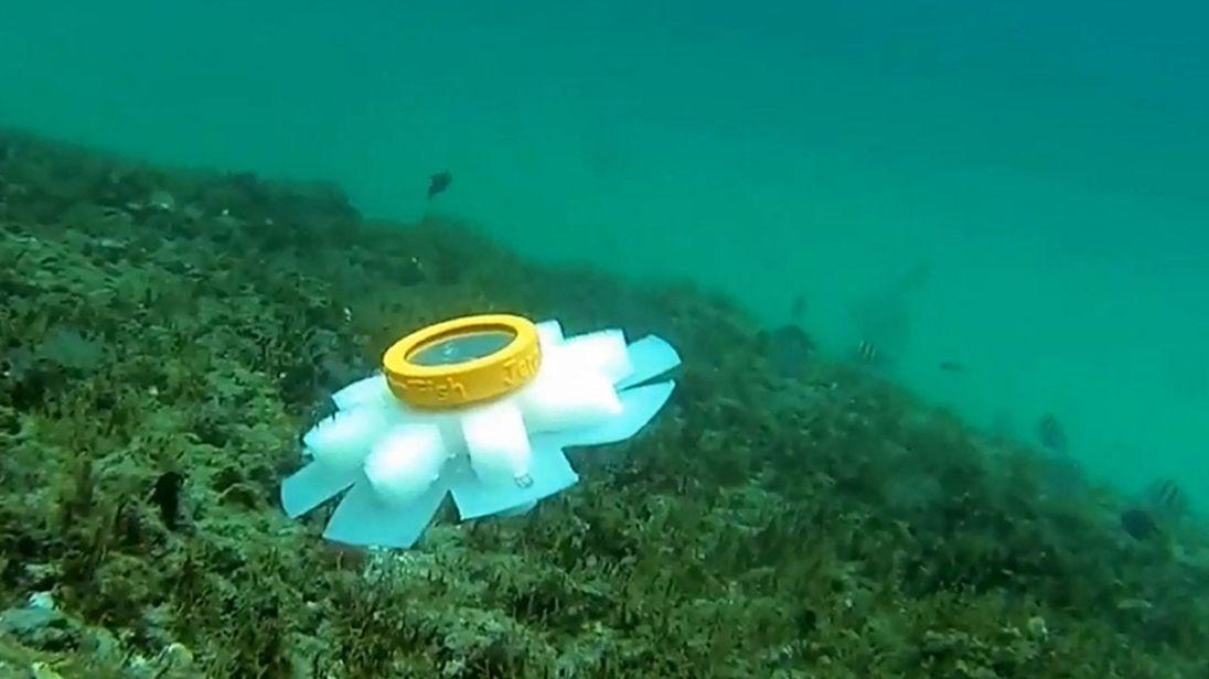 Robot Jellyfish