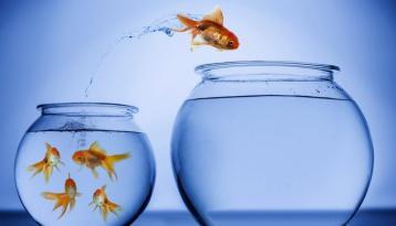 الأربع نماذج الناجحة لأصحاب الشركات الناشئة (لماذا ينجح البعض منهم؟) الجزء الأول