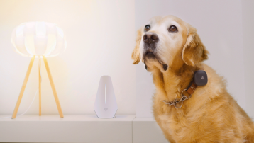 Findster Home: Your Pets' Location and Health Monitored 24/7