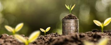 Why are VCs and angels wary about investing in green startups?