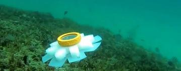الروبوت قنديل البحر