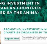 سجل الآن لحضور ندوة إلكترونية حول تشجيع الاستثمار في دول البحر الأبيض المتوسط
