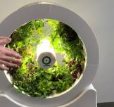 OGarden Smart: Indoor Gardening